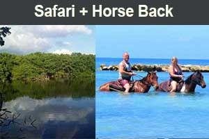 Safari Tour + Horse Back
